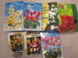 Lot de bulbes Narcisses, bulbes Tulipes, bulbes Divers