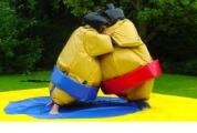 deguisements-costumes sumo PRO