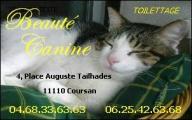 Toilettage Chiens et Chats  BEAUTE CANINE  04.68.33.63.63
